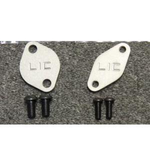 LIC Motorsports Air Pump Delete Plates