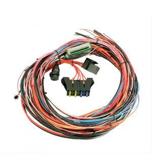 AEM Electronics EMS-4 8ft Universal Wiring Harness w/Relay - Universal