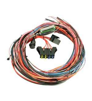 AEM EMS-4 8ft Universal Wiring Harness w/Relay