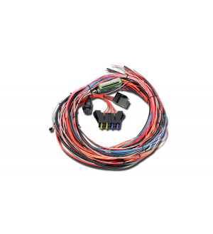 AEM EMS-4 96in Flying Lead Harness w/Fuse & Relay Panel