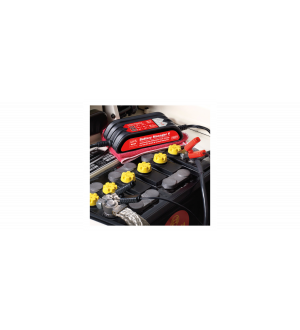 Griots Garage Battery Manager V